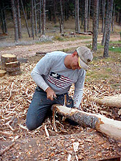 Hand peeled posts; fresh-cut Ponderosa Pine with a drawknife